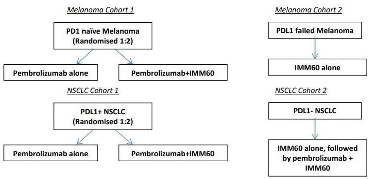 IMP-MEL_Phase2Schema.jpg