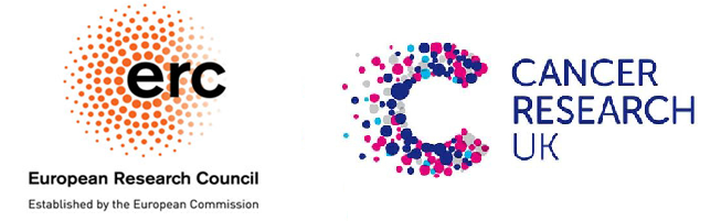 We are generously funded by Cancer Research UK and the European Research Council.